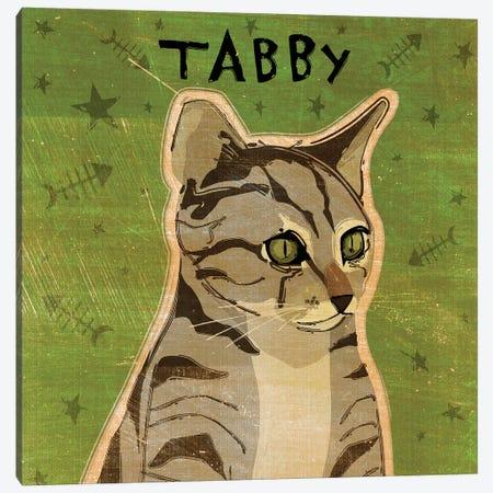 Tabby - Grey Canvas Print #GOL264} by John Golden Canvas Art Print