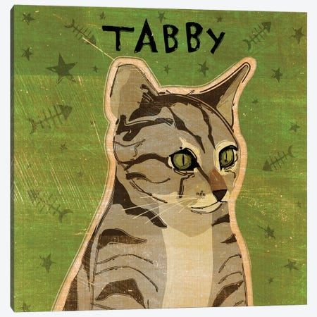 Tabby - Grey Canvas Print #GOL264} by John Golden Canvas Art Print