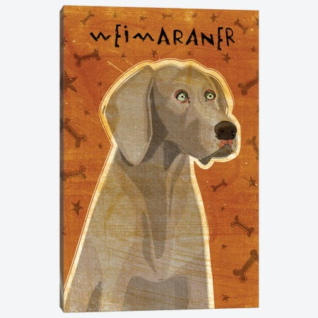 Weimaraner Canvas Print #GOL284} by John Golden Canvas Print