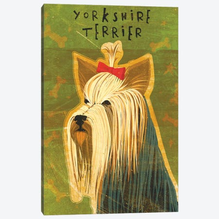 Yorkshire Terrier Canvas Print #GOL297} by John Golden Canvas Wall Art