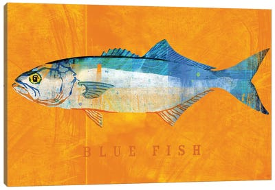Blue Fish Canvas Art Print