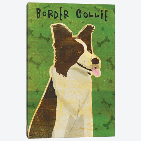 Border Collie Canvas Print #GOL35} by John Golden Art Print