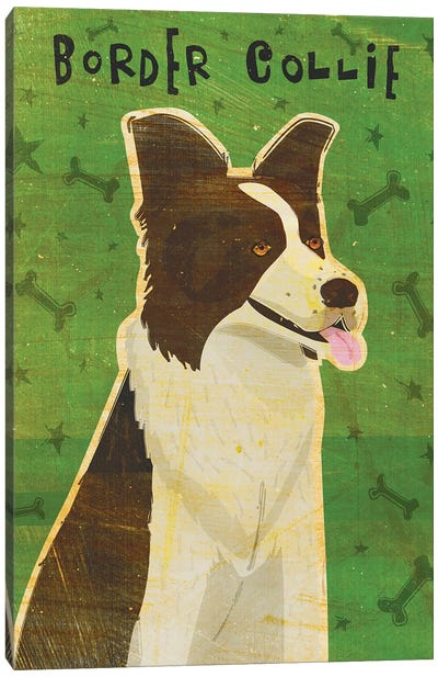 Border Collie Canvas Art Print
