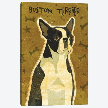 Boston Terrier Canvas Print #GOL40} by John Golden Art Print