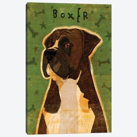 Boxer - Brindle Canvas Print #GOL42} by John Golden Canvas Print