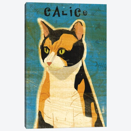 Calico Canvas Print #GOL47} by John Golden Canvas Art