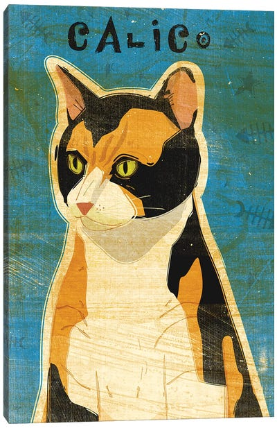 Calico Canvas Art Print
