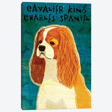Cavalier King Charles - Blenheim Canvas Print #GOL51} by John Golden Canvas Art