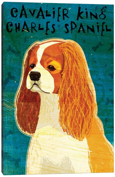 Cavalier King Charles - Blenheim Canvas Art Print