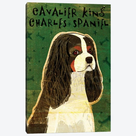 Cavalier King Charles - Tri-Color Canvas Print #GOL52} by John Golden Canvas Wall Art