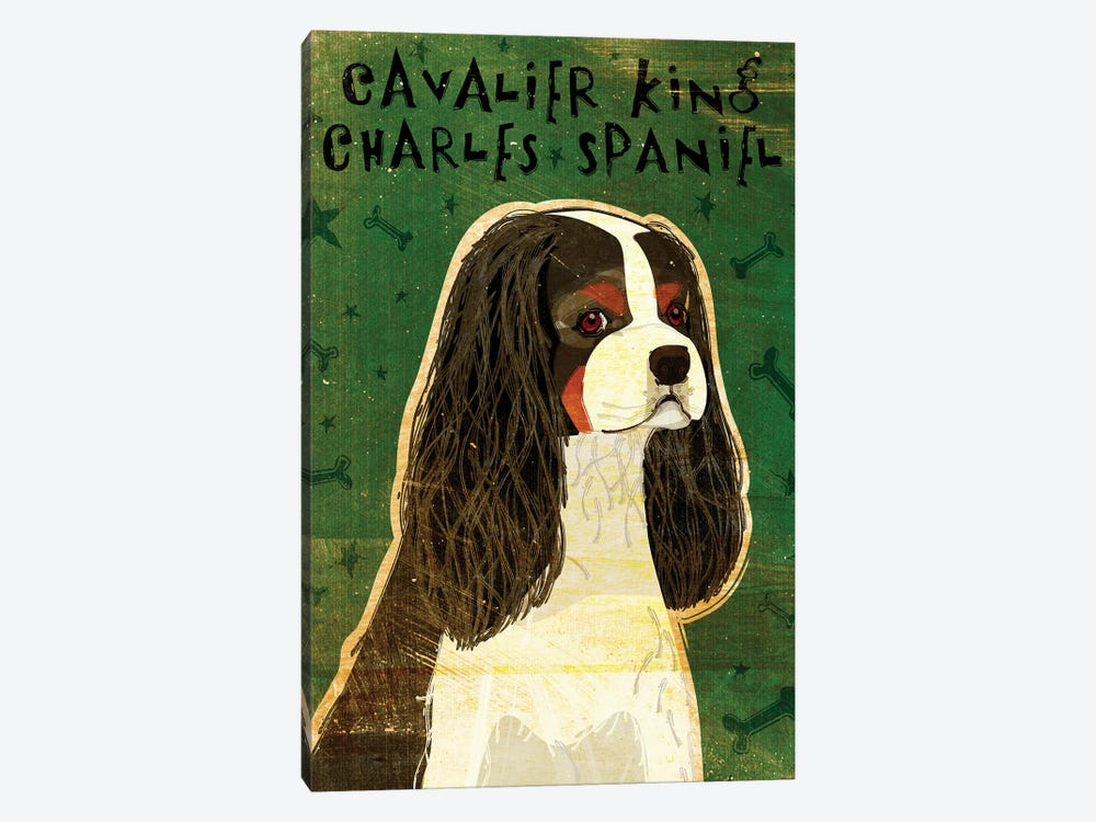 Cavalier King Charles - Tri-Color by John Golden 1-piece Canvas Print