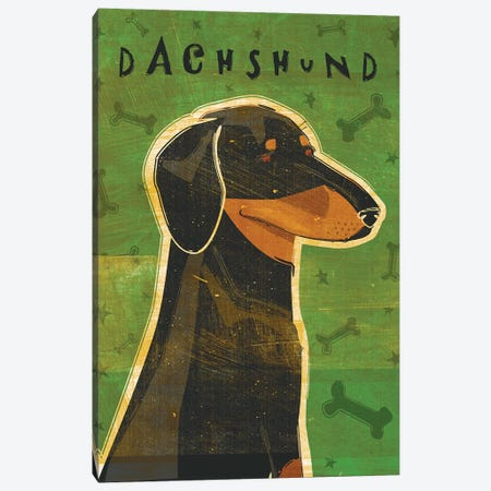 Dachshund - Black & Tan Canvas Print #GOL64} by John Golden Canvas Art