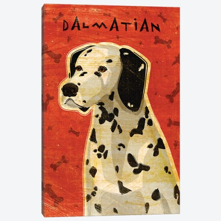 Dalmatian Canvas Print #GOL66} by John Golden Canvas Wall Art