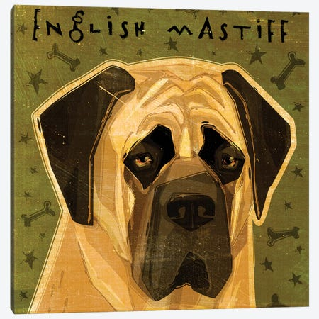 English Mastiff Canvas Print #GOL76} by John Golden Canvas Art Print