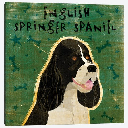 English Springer Spaniel - Black & White 3-Piece Canvas #GOL80} by John Golden Art Print