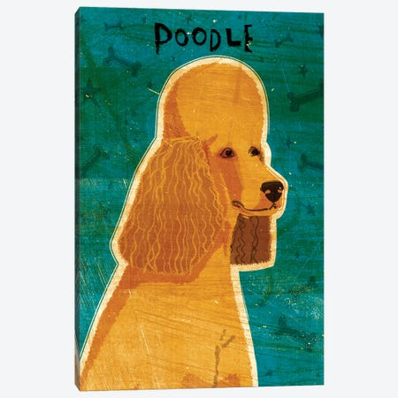 Apricot Poodle Canvas Print #GOL8} by John Golden Canvas Print