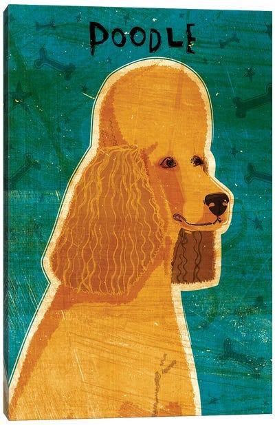 Apricot Poodle Canvas Art Print