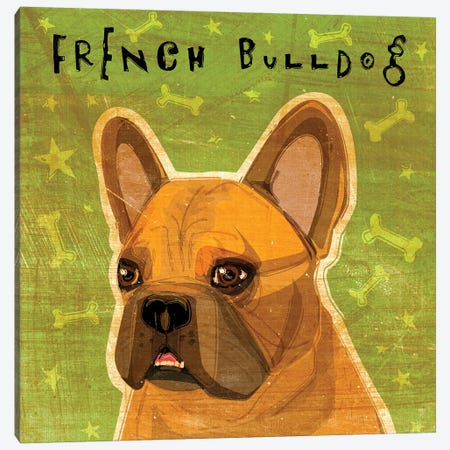 French Bulldog - Fawn Canvas Print #GOL92} by John Golden Canvas Wall Art