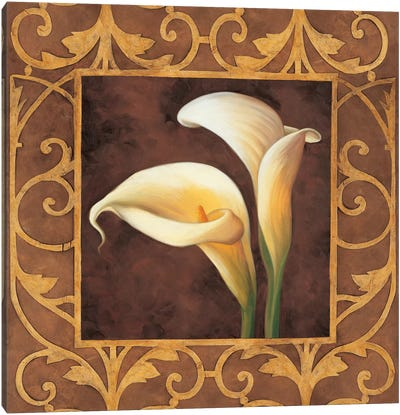 Ornamental Callas Canvas Print #GON4