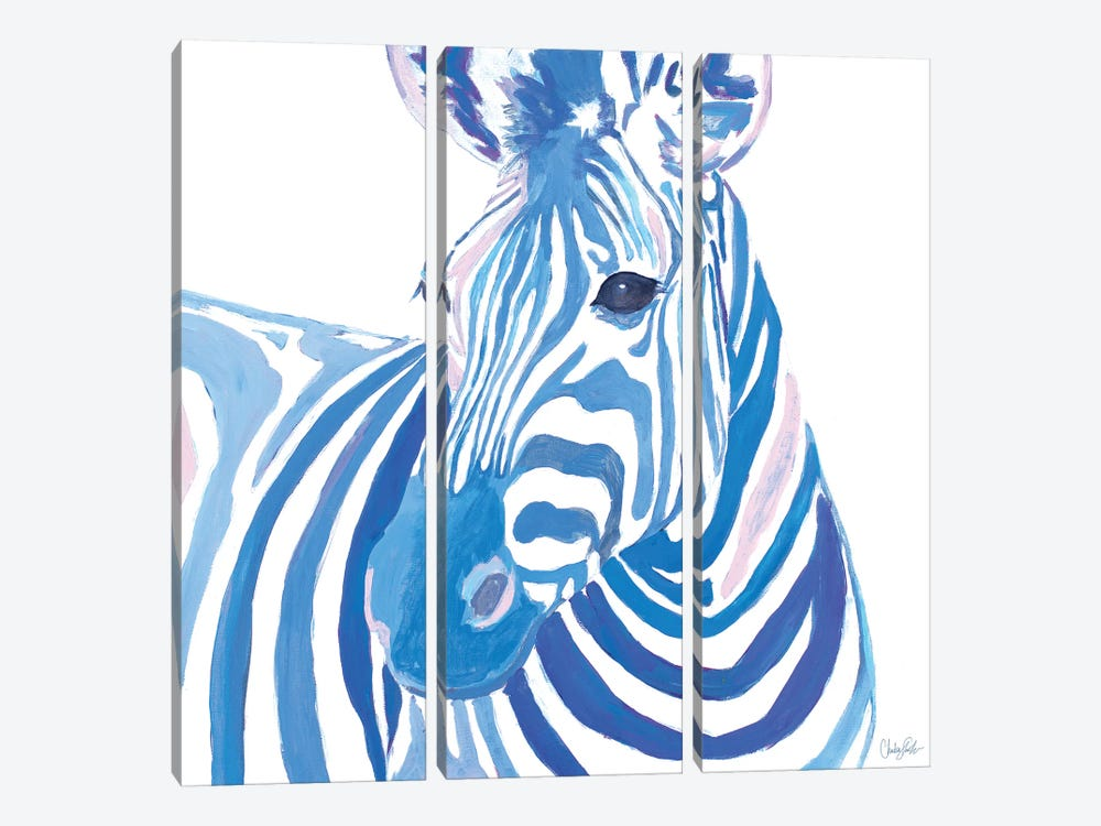 Vibrant Zebra by Chelsea Goodrich 3-piece Canvas Art