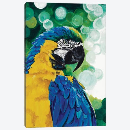 Brilliant Parrot Canvas Print #GOO9} by Chelsea Goodrich Canvas Artwork