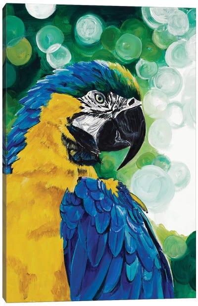 Brilliant Parrot Canvas Art Print