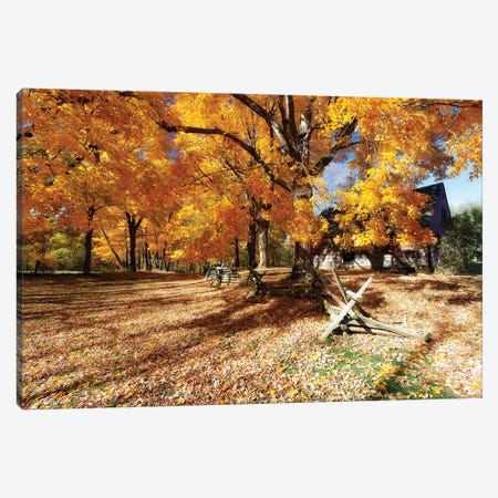 Leaves Covered Road, Wick Farm, Jockey Hollow State Park, Morristown, New Jersey Canvas Print #GOZ109} by George Oze Canvas Wall Art