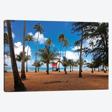 Lifeguard Hut on a Palm Covered Tropical Beach, Luquillo, Puerto Rico Canvas Print #GOZ111} by George Oze Art Print