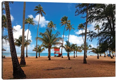 Lifeguard Hut on a Palm Covered Tropical Beach, Luquillo, Puerto Rico Canvas Art Print