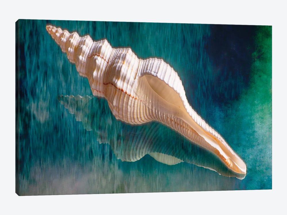 Aquatic Dreams III by George Oze 1-piece Canvas Art