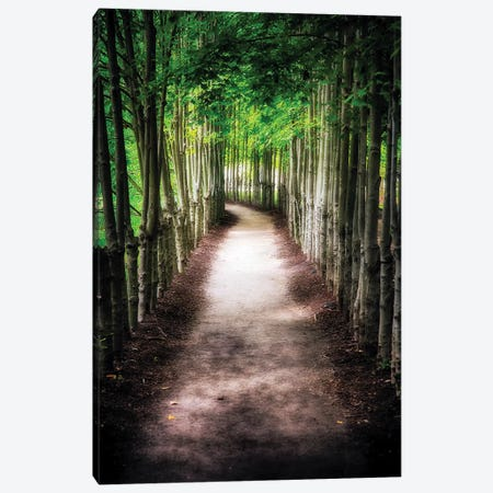 Path To My Destination Canvas Print #GOZ148} by George Oze Canvas Artwork