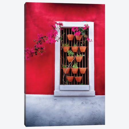 Potted Flowers in a Window Canvas Print #GOZ154} by George Oze Canvas Wall Art
