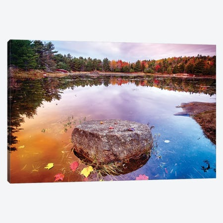 Rock with Fallen Leaves in a Pond, Acadia National Park, Mt Desert Island, Maine Canvas Print #GOZ171} by George Oze Canvas Print