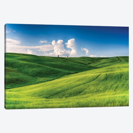 Rolling Hills with Cypress Trees and Wheat Fileds, Tuscany, Italy Canvas Print #GOZ172} by George Oze Canvas Print