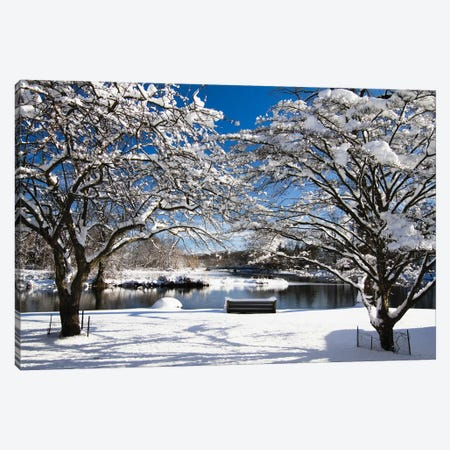 Snow Covered Trees, Winter Scenic, South Branch of Raritan River, Clinton, New Jersey 3-Piece Canvas #GOZ186} by George Oze Canvas Print