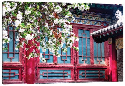 Blooming Tree in front of a traditional Chinese Building, Beilin, Xian, China Canvas Art Print