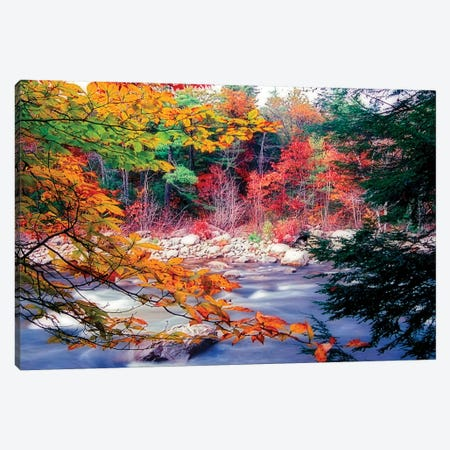 Swift River Autumn Scenic, White Mountains National Forest, New Hampshire Canvas Print #GOZ201} by George Oze Canvas Print
