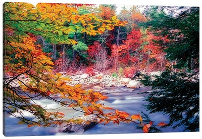 Swift River Autumn Scenic, White Mountains National Forest, New Hampshire Canvas Art Print