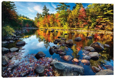Swift River Fall Foliage Reflections Canvas Art Print