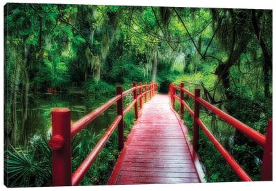 View of a Red Wooden Footbridge in a Southern Marshy Garden, Magnolia Plantation, Charleston, South Carolina Canvas Art Print