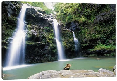 Waikani Falls, Maui, Hawaii Canvas Art Print