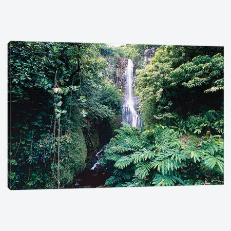 Wailua Falls on Hana Hwy, Maui, Hawaii Canvas Print #GOZ232} by George Oze Canvas Wall Art