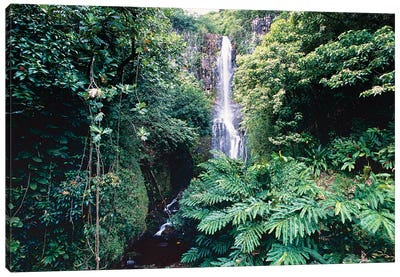 Wailua Falls on Hana Hwy, Maui, Hawaii Canvas Art Print