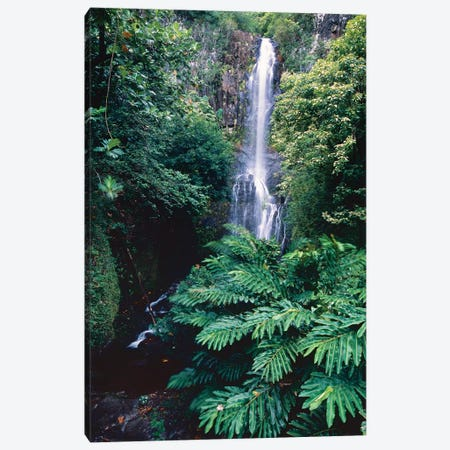 Wailua Falls on the Road To Hana, Maui, Hawaii Canvas Print #GOZ233} by George Oze Canvas Art