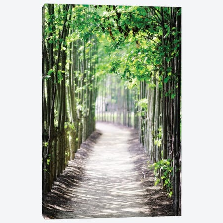 Walking Path in the Woods, New Jersey 3-Piece Canvas #GOZ234} by George Oze Canvas Art Print
