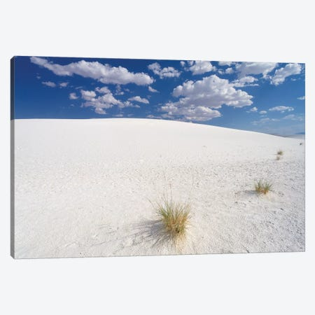White Gypsum Sand Dunes, White Sands National Document, New Mexico Canvas Print #GOZ240} by George Oze Art Print