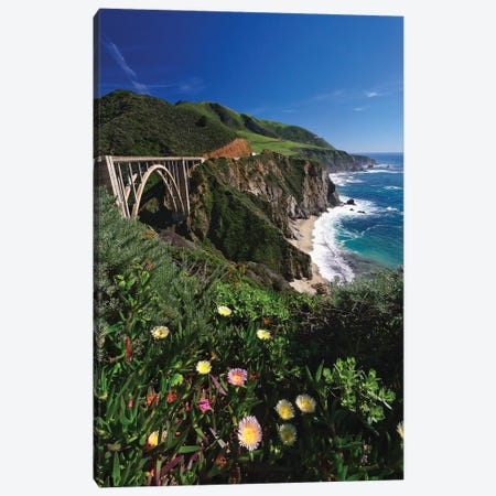 Wildflower Bloom at the Bixby Bridge, Big Sur Coast, California Canvas Print #GOZ241} by George Oze Canvas Art Print