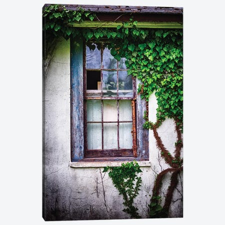 Old Weatherworn Window Overgrown With Ivy Canvas Print #GOZ272} by George Oze Canvas Art