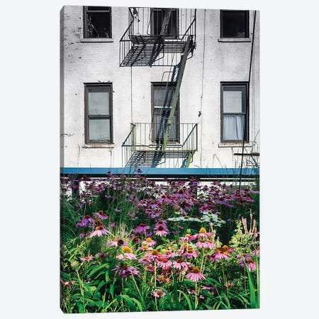 Urban Meadow, New York City Canvas Print #GOZ308} by George Oze Canvas Wall Art