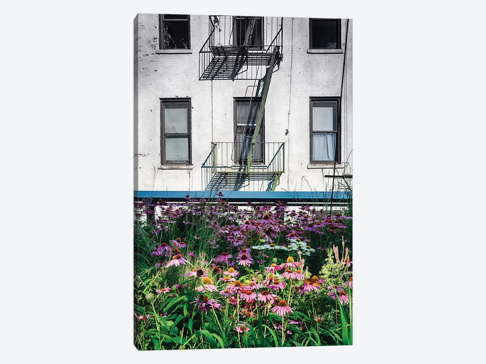 Urban Meadow, New York City 1-piece Canvas Print